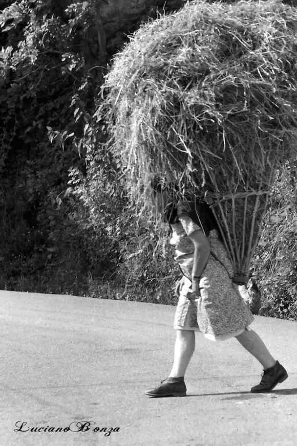 Portatori di gerle, L'Aprica, 1960