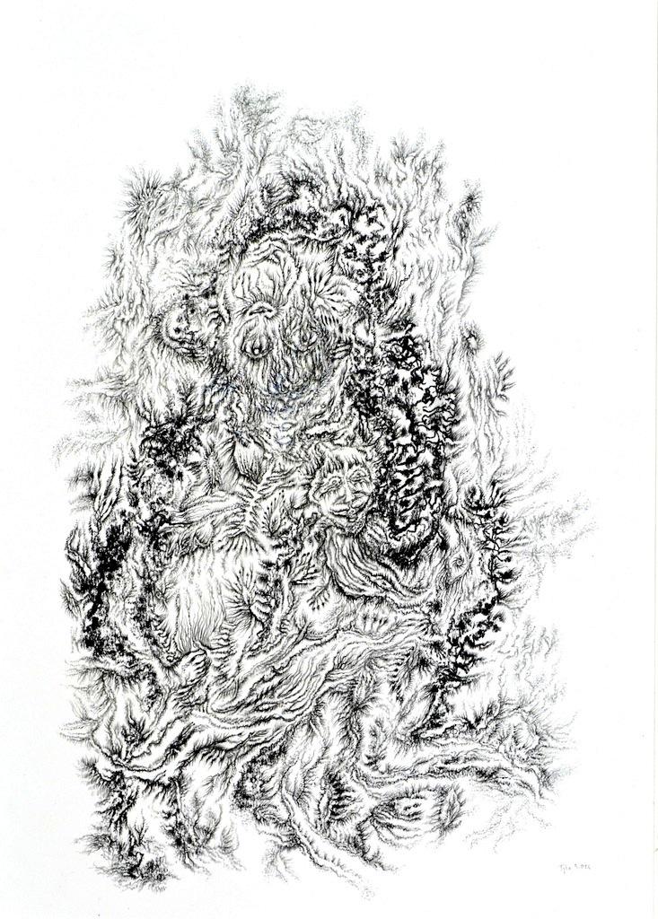 ©Stefano Teglia,Ametista,disegno, 2014