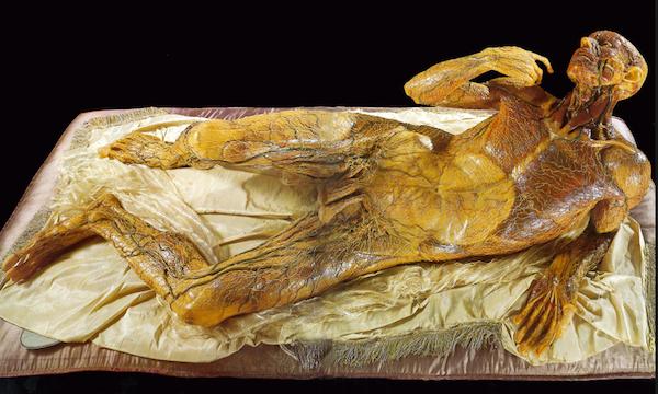 G. Zumbo, (Zummo)Ceroplastica, 1656-1701 1